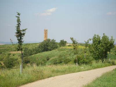 Rozhledna Akátová věž